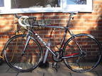 Trek 1.2 Triple 2010 Road Bike